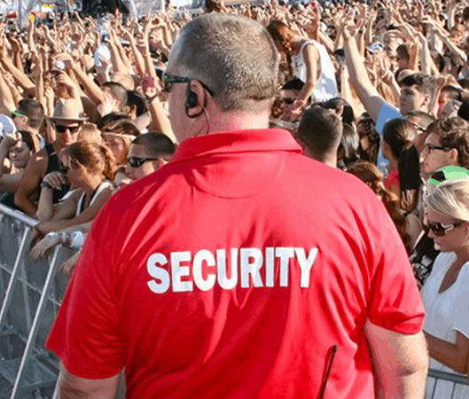 festival security to stop theft